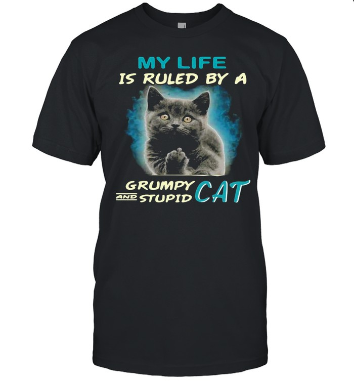 My Life Is Ruled By A Grumpy And Stupid Cat T-shirt Classic Men's T-shirt