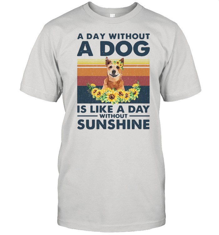 A Day Without A Dog Is Like A Day Without Sunshine Red Heeler Vintage  Classic Men's T-shirt