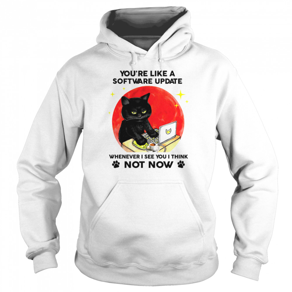 Black Cat You're like a software update whenever i see you i think not now shirt Unisex Hoodie