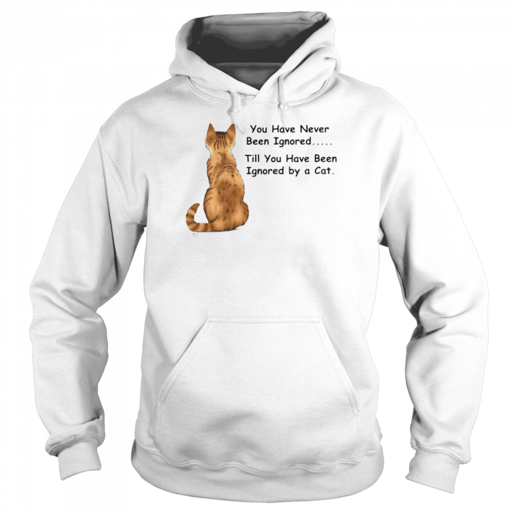 Cat You Have Never Been Ignored Till You Have Been Ignored By A Cat T-shirt Unisex Hoodie